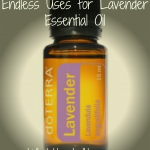 Endless Uses for Lavender Essential Oil -WholeHeartedHome