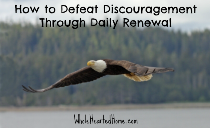 How to Defeat Discouragement Through Daily Renewal {WholeHearted Home}