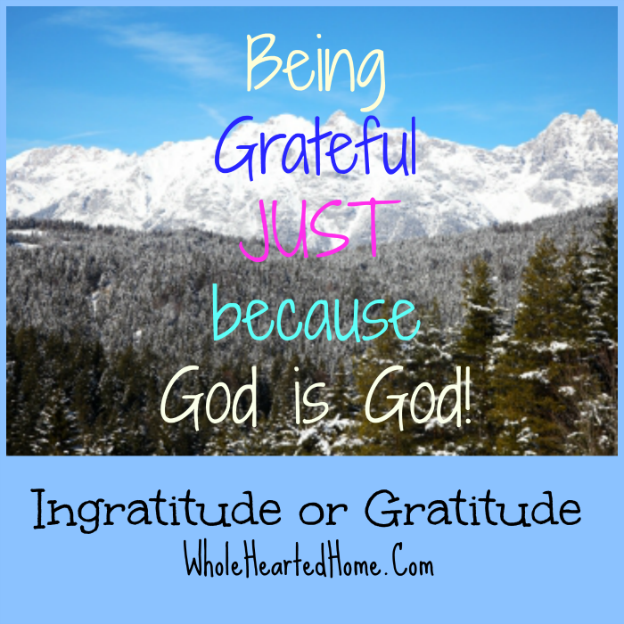 Ingratitude or Gratitude {WholeHearted Home}