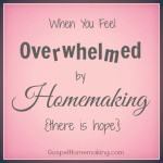 overwhelmedbyhomemaking