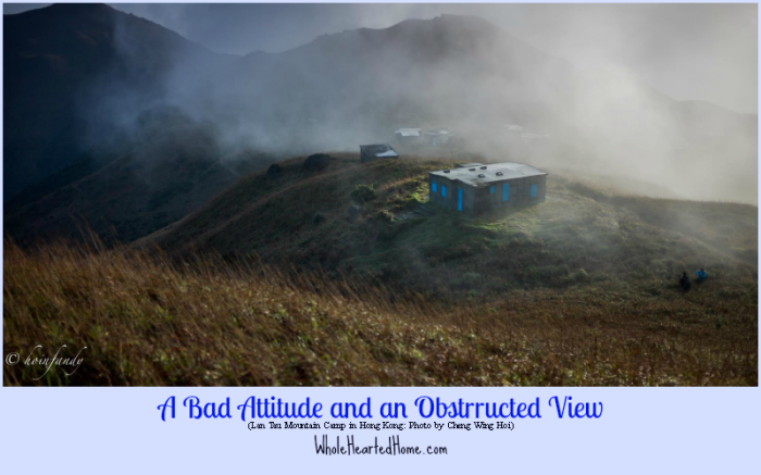 A Bad Attitude and an Obstructed View