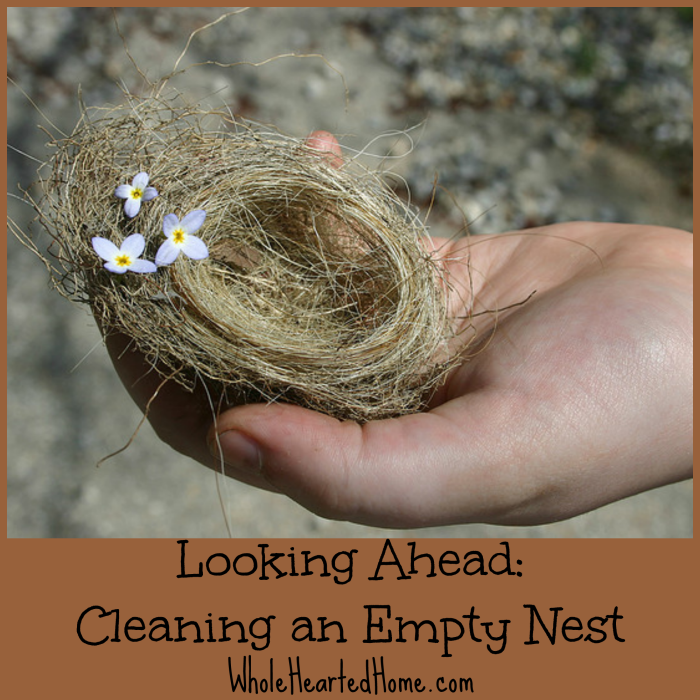 Looking Ahead- Cleaning an Empty Nest