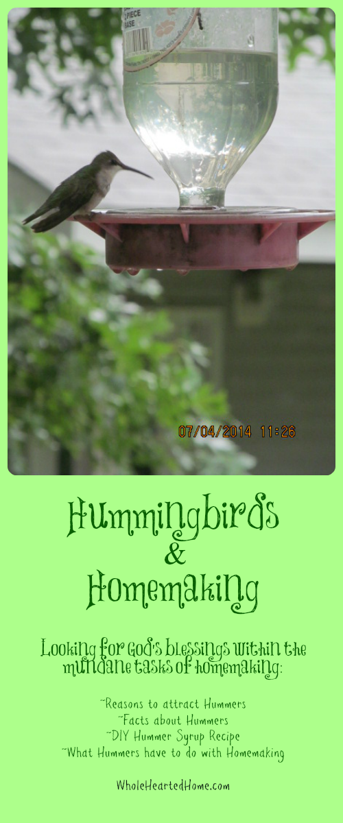 Hummingbirds & Homemaking {WholeHearted Home}