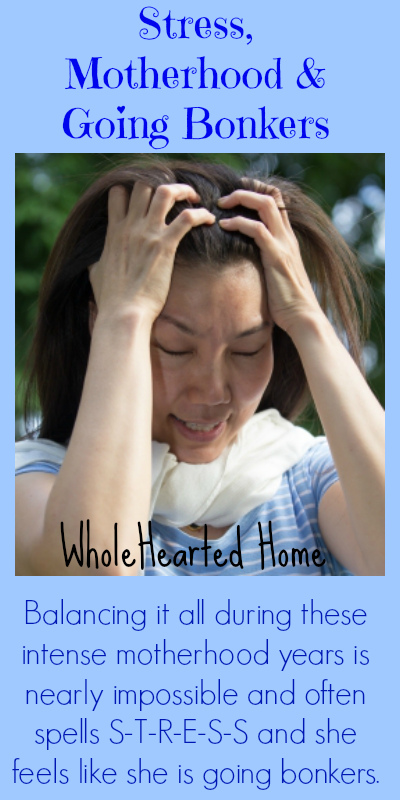 Stress, Motherhood & Going Bonkers {WholeHearted Home}