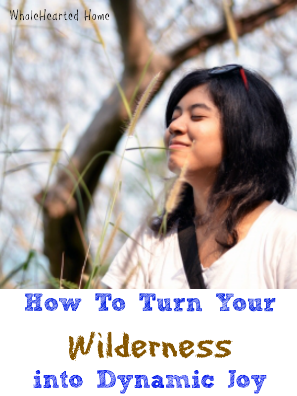 How To Turn Your Wilderness into Dynamic Joy