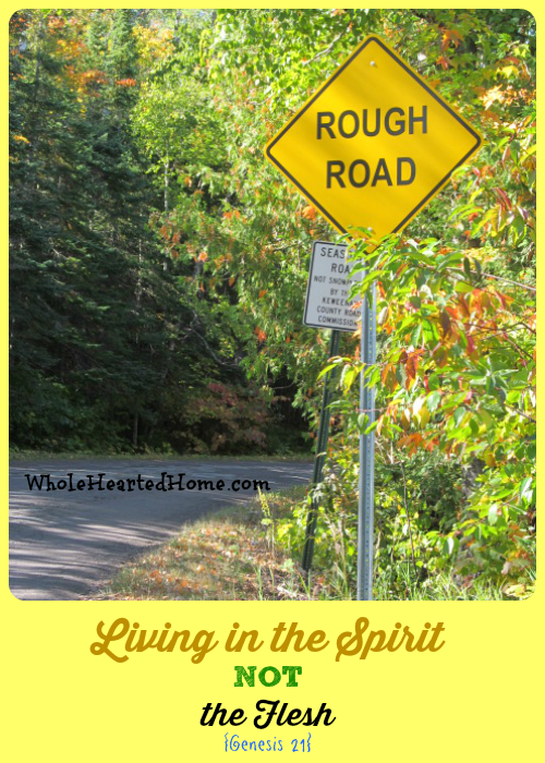 Living in the Spirit NOT the Flesh {Genesis 21} WholeHearted Home