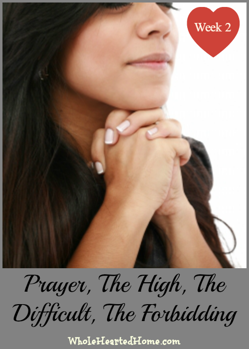 Prayer, The High, The Difficult, The Forbidding - Week 2 {WholeHearted Home}
