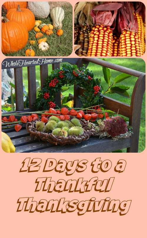 Thankful Thanksgiving now in FREE PDF!!