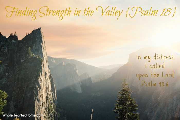 Finding Strength in the Valley {Psalm 18}