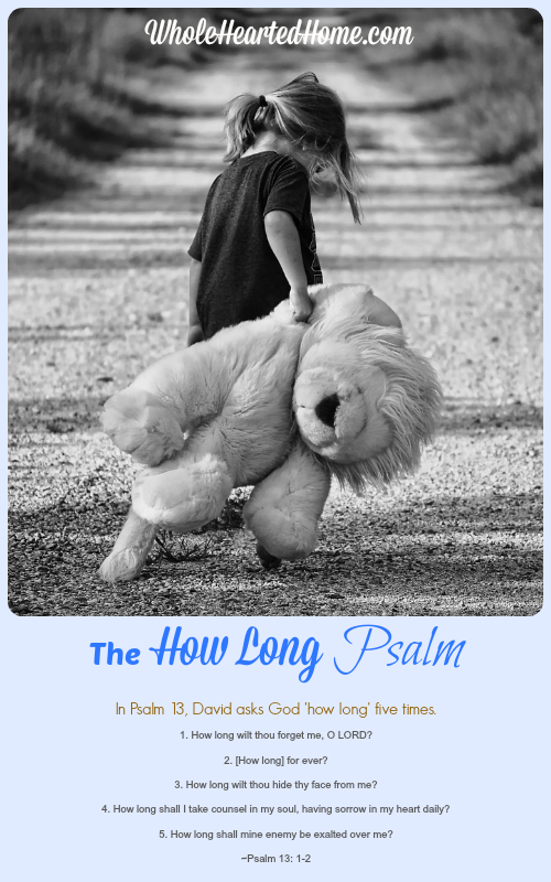The How Long Psalm